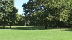 Lag Baomer - Grande journée champêtre