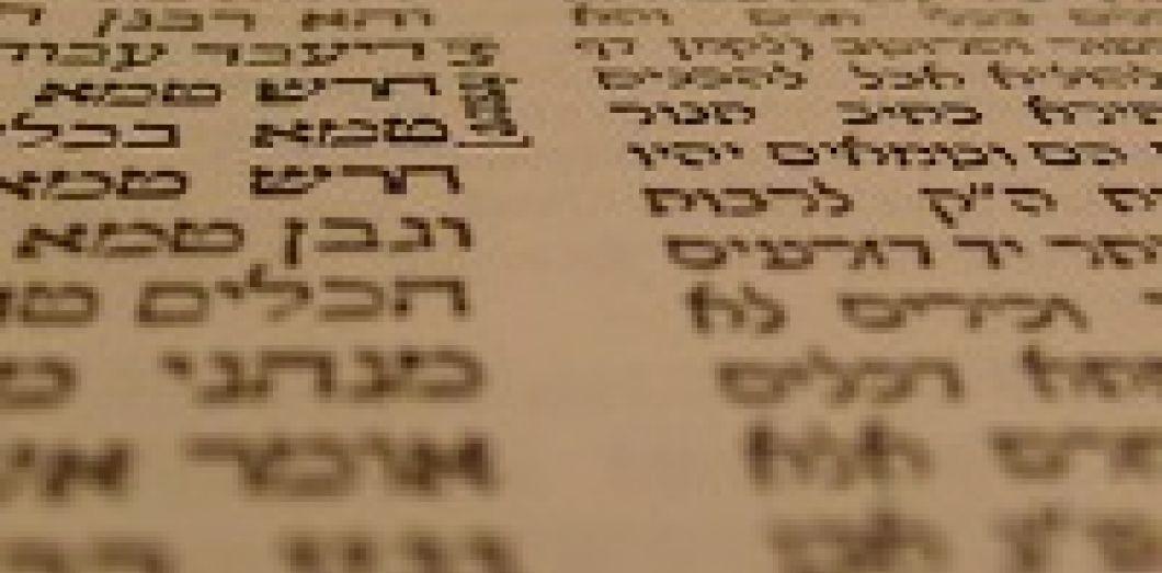 La femme et le féminin dans les Textes
