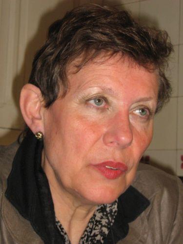 Réflexion débat connectée: des tsiganes vers Auschwitz, avec Monique Heddebaut