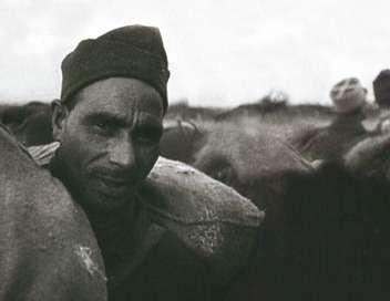 Maghreb 39-45, un destin qui bascule, de Bernard George