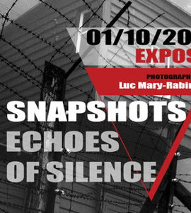 Snapshots Echoes of Silence
