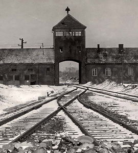 Histoires de six Justes parmi les nations à Auschwitz: Lueurs d'humanité
