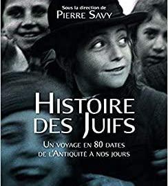 Novembre numérique : Lancement d'un livre d'histoire en temps de crise, avec Pierre Savy