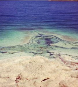 Peut-on sauver la mer Morte?,  de Terri Randall
