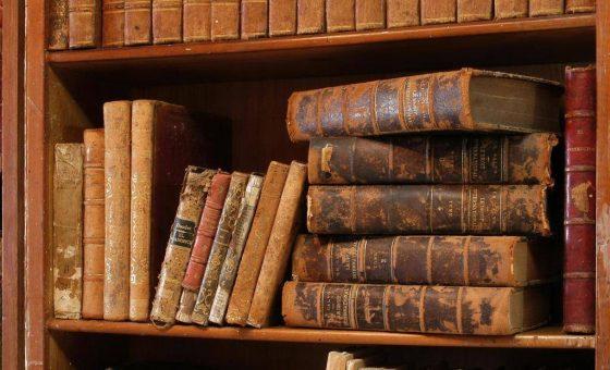 Formation pour adulte en philosophie antique, avec Dalia De Macar - Elbaum
