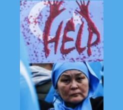 La répression des Ouïghours, avec Dilnur Reyhan et Paul Memmi