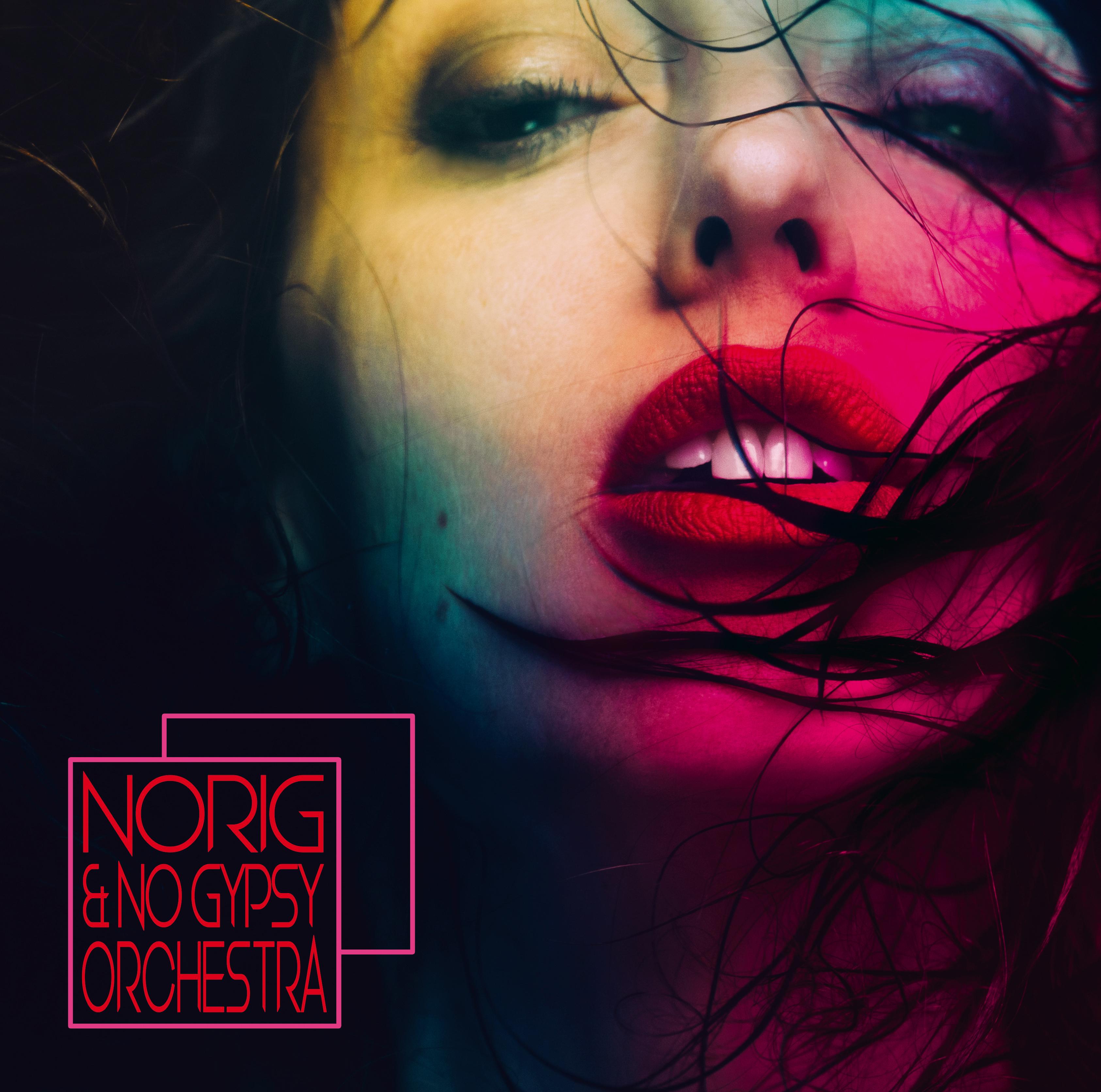 Norig et le No Gypsy Orchestra