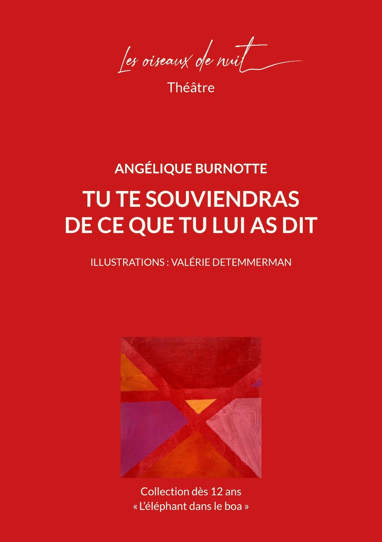 Tu te souviendras de ce que tu lui as dit, d'Angélique Burnotte