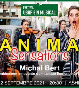 Anima Sensations, de Michal Bert
