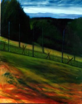 100 vues de la liberté: Struthof, par Roger Dale