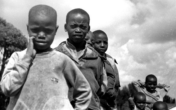 Une cicatrice dans l'histoire. Rwanda 1994, le génocide des Tutsi