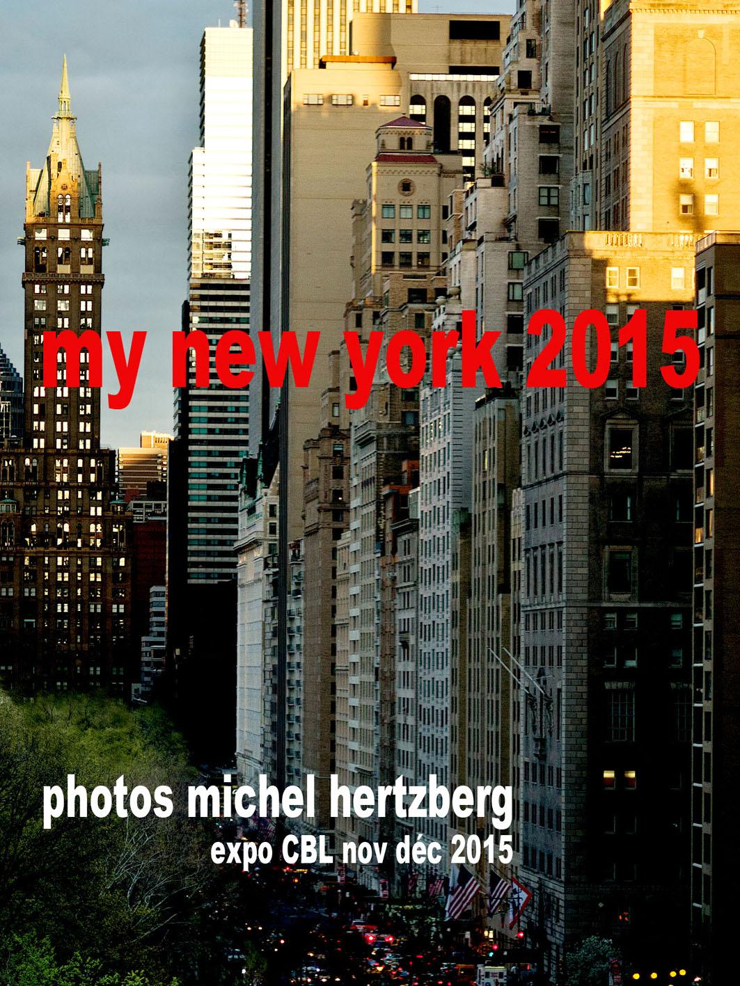 My New York 2015, de Michel Hertzberg