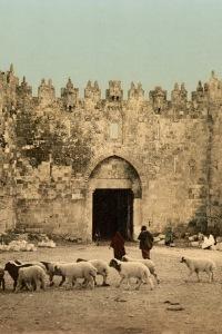 Une biographie de Jérusalem