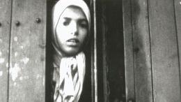 La persécution des Tsiganes dans l'Europe nazie