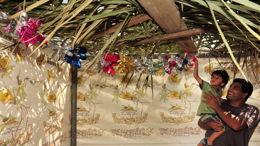 Soucot: liberté en cabane
