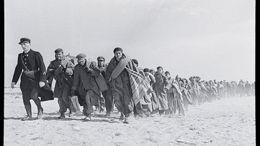Les camps d'internement français sous Vichy