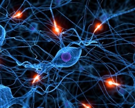 Le judaïsme à la lumière des neurosciences