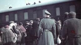L'action Reinhard: passage à l'acte génocidaire