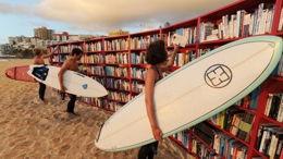 Des livres, BD, DVD, plein l'été