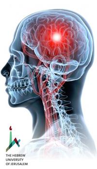 Comprendre et soigner les douleurs neuropathiques