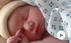 La recherche sur l'embryon ne pose aucun problème au judaïsme