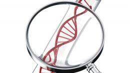 Tests génétiques: de la médecine aux enquêtes criminelles