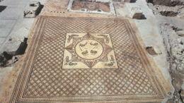 Les secrets d'Ein Gedi, synagogue du désert