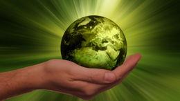 L'écologie au regard de la Tora