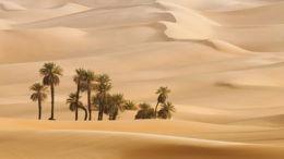 La sortie d'Egypte comme événement fondateur