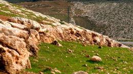 Devarim: Le livre de l'entrée en Israël