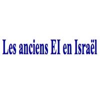 Association des Anciens Eclaireurs Israélites en Israël